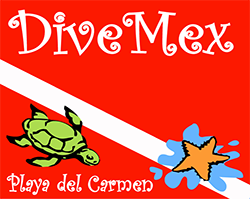 dive mex logo HD