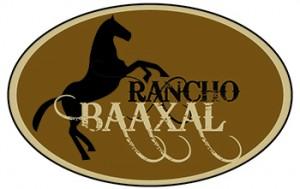logo_baaxal_elegido